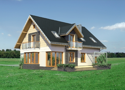 Projekt domu Axel Neo