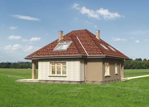 Projekt domu Benon