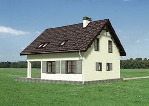 Проект домa Фазан