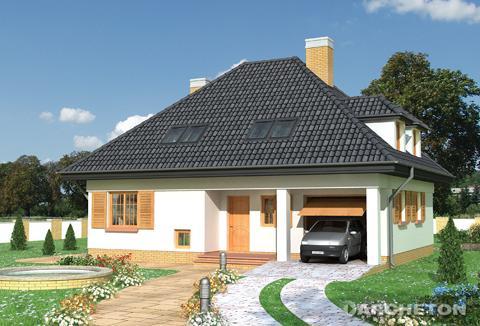 Одноэтажный дом, с эксплуатационным чердаком, без выстроенного подвала, с гаражом