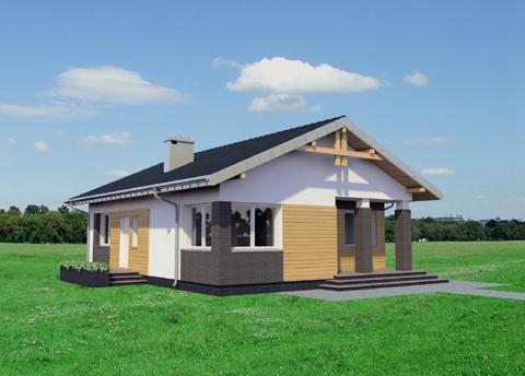 Projekt domu Chatka