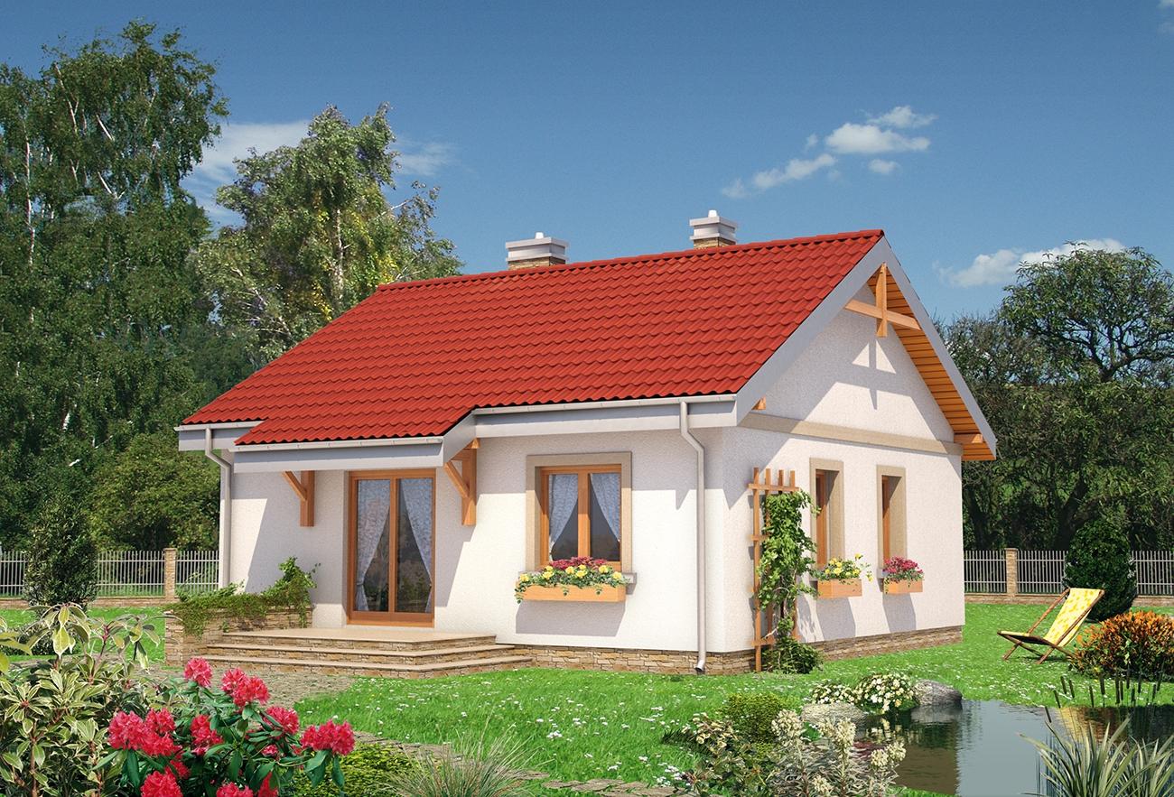 Проект домa Чижик