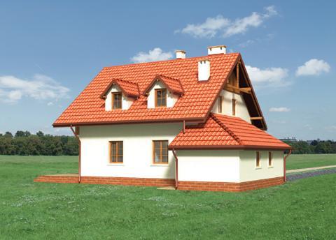 Projekt domu Irga