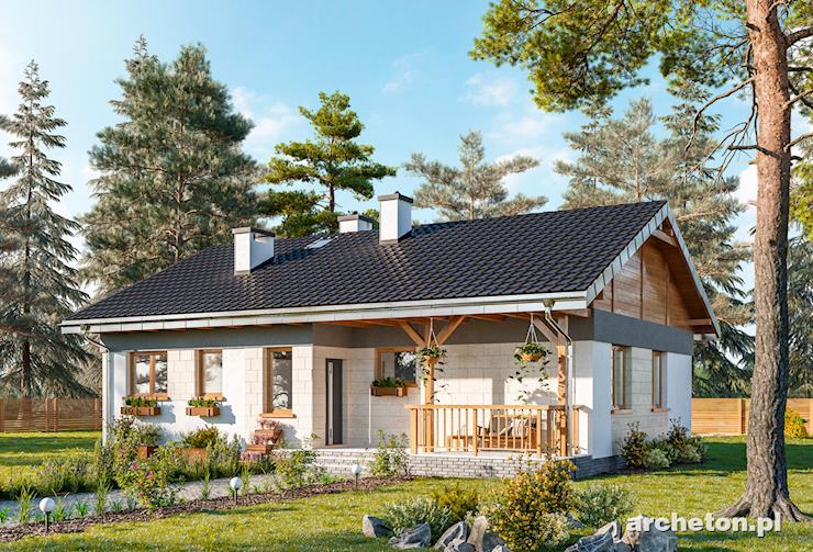 Projekt domu Kruszyna