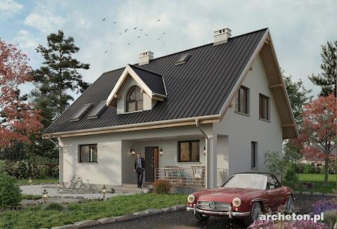 Одноэтажный дом, с эксплуатационным чердаком