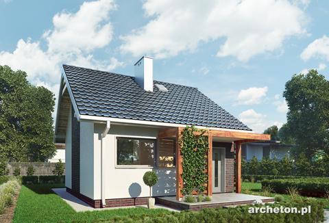 Projekt domu Maluch