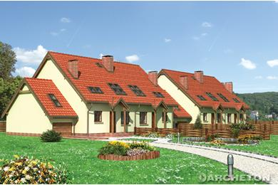 Projekt domu Stonoga (*)