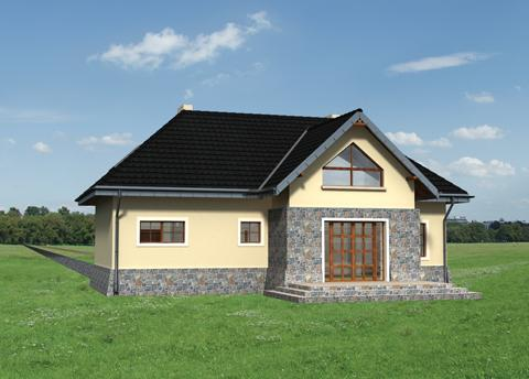 Projekt domu Wit